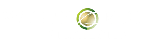 Walker Reid Strategies